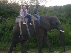 The chance to go on an elephant ride - amazing!