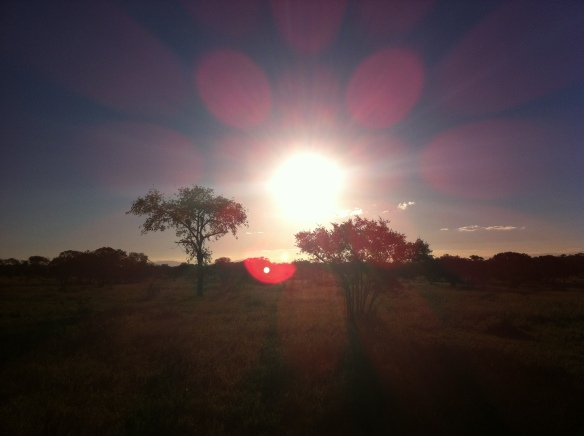 Sunset over Kruger National Park