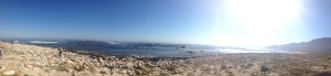 The beautiful beach at the Cape of Good Hope