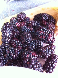 Blackberries!!!