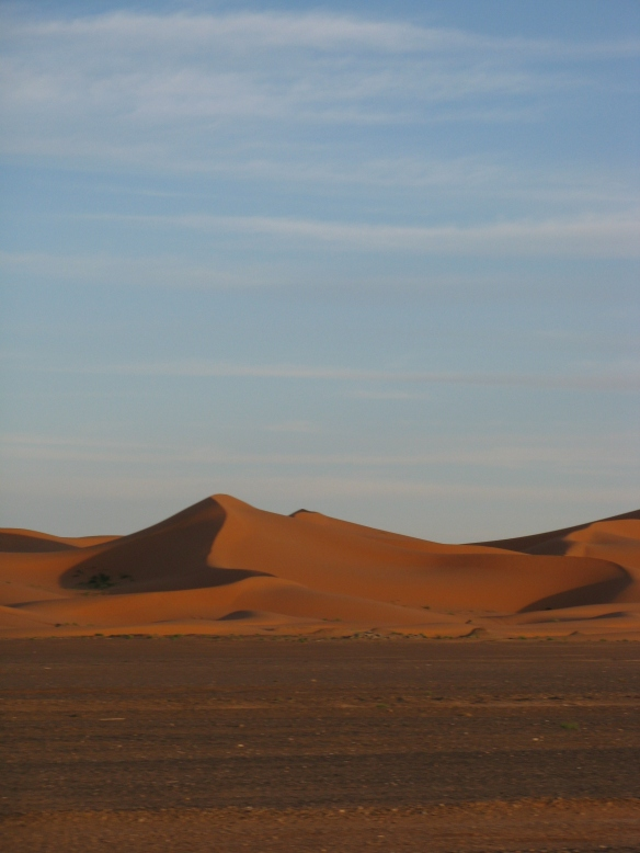 The desert, its changing sands, dramatic landscape and kalidascope of colours. It is breathtaking standing on the top of a dune as the sun is rising.